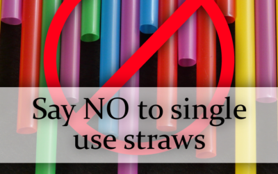 Help Save our Planet by saying NO to Single Use Plastic!