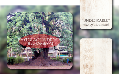 """""""UNDESIRABLE"""" TREES:"""